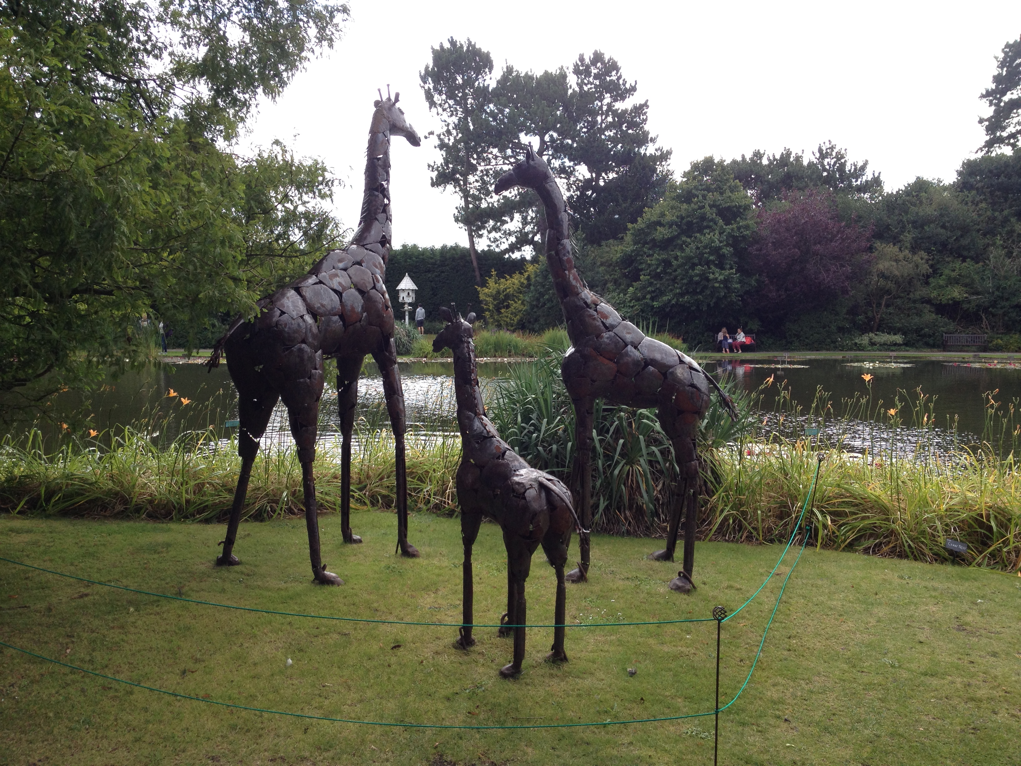 Sculptures at Burnby Hall Gardens