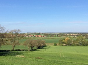 View of Burythorpe